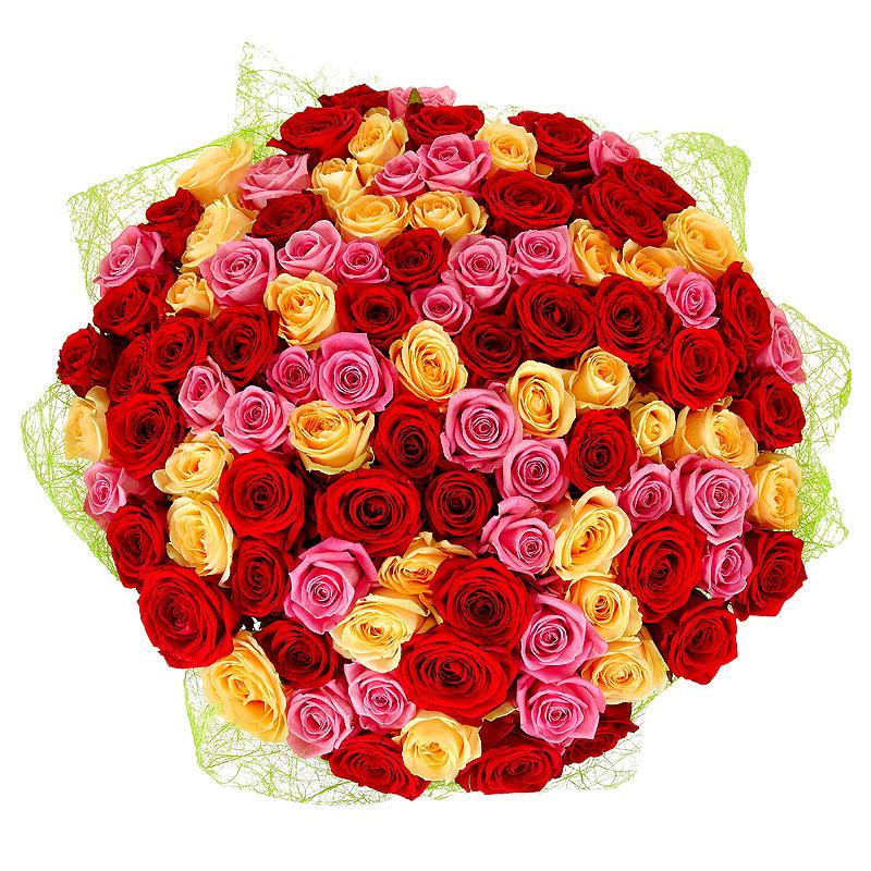 Купить 100 розы с доставкой по беларуси