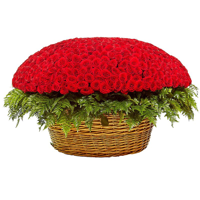 Доставка цветов по телефону в москве 24 часа
